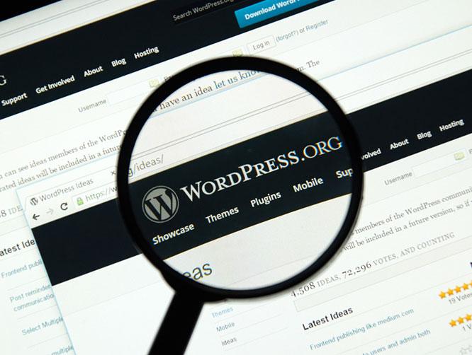 jasa pembuatan website jakarta barat